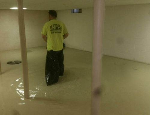 Water Remediation From Sump Pump Failure
